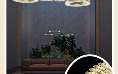 CANOPUS Crystal Chandeliers Collection
